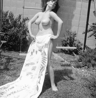 1960s Vogel Negative, busty nude brunette pin-up girl Terry Bryan, t101896