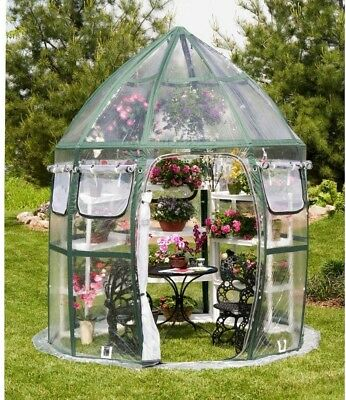 FlowerHouse Conservatory Greenhouse 8 ft. x 8 ft. Pop-Up Protect Plants Growing