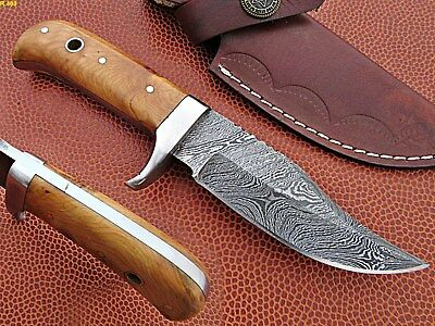 Custom Hand Made Damascus steel Hunting Skkiner Knife With Olive Wood Handle.