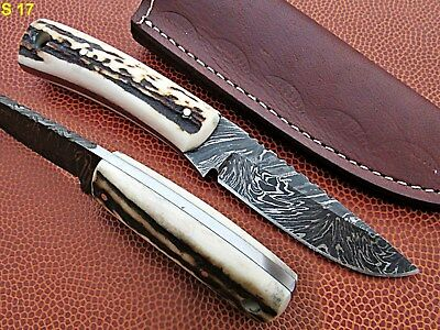 Custom Hand Made Damascus steel Hunting Mini Knife With Stag/Antler horn Handle.