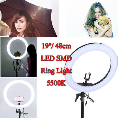 "19"" 240 LED SMD Ring Light Dimmable 5500K Continuous Lighting Photo Video Kit US"
