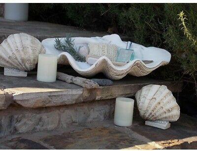 Large Clam Shell Beach Home Decor Tabletop Buffet Dresser Sea Collection Display