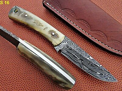 Custom Hand Made Damascus steel Hunting Mini Knife With Sheep horn Handle.