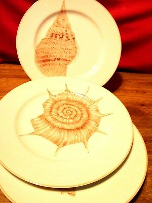3, Fitz & Floyd, Coquille,  Dinner Plates