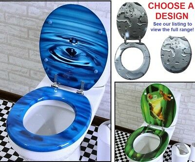 Modern Colourful Bathroom Toilet Seat Cover Lid Metal Hinge Pick Art & Colour