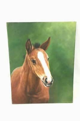Original Painting of Sweet Horse Looking at You Signed by Rose M. Sullivan 2004