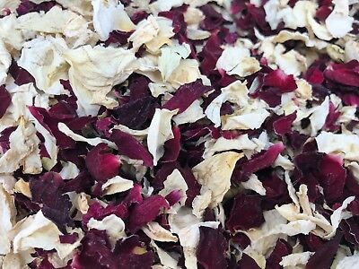 Ivory Red Burgundy Dried Real Rose Petal Wedding Confetti Natural Biodegradable