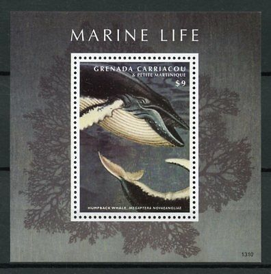 Grenadines Grenada 2013 MNH Marine Life Humpback Whale 1v S/S Whales Stamps