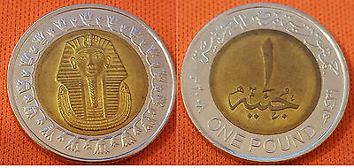 """1xEGYPT ONE POUND COIN KING TUT """"CIRCULATED"""" NO LONGER MINTED FINE CONDITION"""