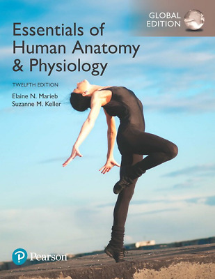 NEW - Fast to AUS - Essentials of Human Anatomy & Physiology by Marieb (12 Ed)