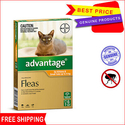 ADVANTAGE for Cats 6 Pipettes ORANGE pack Upto 4 Kg Flea Treatment by Bayer