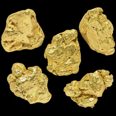 5 pcs Alaska Natural Placer Gold - Alaskan Gold - TVs Gold Rush (#G289-1)