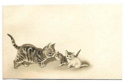 Les chats Chatons Animaux domestiques - - - Chromo - Trade Card
