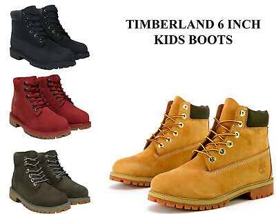 12b6fff5d6922 Kids Timberland Boots 6 Inch Premium Waterproof Boots Little Kids   Big Kids  NEW