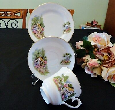 Vintage Queen Anne Bone China Trio Country Cottage & Garden