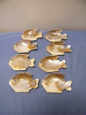 SET OF 8 OYSTER SHELLS CUT INTO THE SHAPE OF A FISH for Baking-Crafts