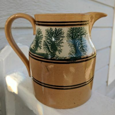 Outstanding 19th C. Yelloware Mochaware Seaweed Decorated Pitcher. AAFA