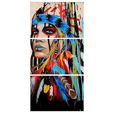 Home Wall Decor Beauty Native American Indian Girl Feathered 12x18inch 3 Panels