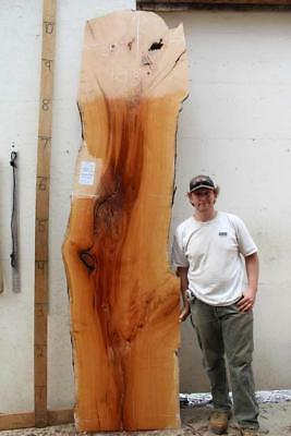 Cherry Raw Wood Slab Custom Natural Live Edge Furniture Tabletop Counter 4987d4