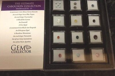 Gem Collector The Ultimate Cabochon Collection