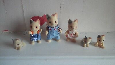 Sylvanian Families The whiskers cat family and babies