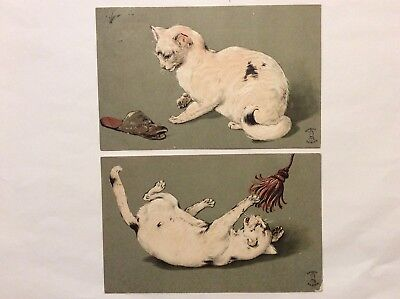 Vintage Postcards, Cats, Early Embossed Cards, Knight Series, Great Quality,1905