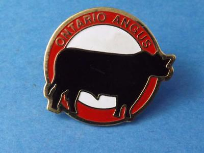 Ontario Black Angus Cow Pin Vintage Beef Farmer Club Agriculture  Collector