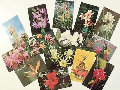 STATE FLOWERS OF HAWAII HI VEGETATION VINTAGE POSTCARD LOT 60s-80s STD UNUSED f