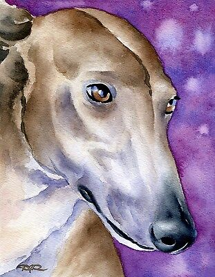 GREYHOUND Dog Watercolor 8 x 10 ART Print Signed by Artist DJR