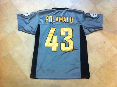 Troy Polamalu Pittsburgh Steelers Nike Gray Jersey Youth Small Lightly Worn Rare