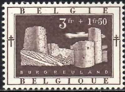 Belgium 1952 Anti-Tubercolosis & Other Funds 3f.+1f.50 Brown SG.1421 Mint Hinged