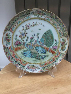 19th Century Chinese cantonese peacock plate