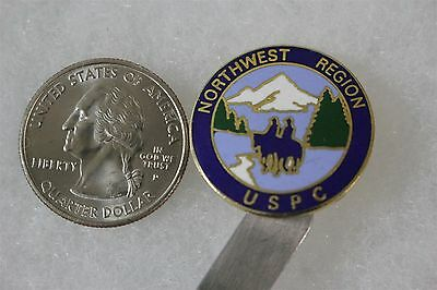 Northwest Region Pony Club USPC Riding Equestrian Pin Pinback #20121