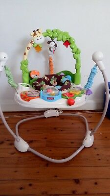 fisher price go wild jumperoo activity centre
