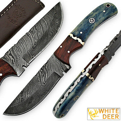 White Deer Blue Bunyan Damascus Steel Knife Bison Bone & Hardwood Handle SHARP