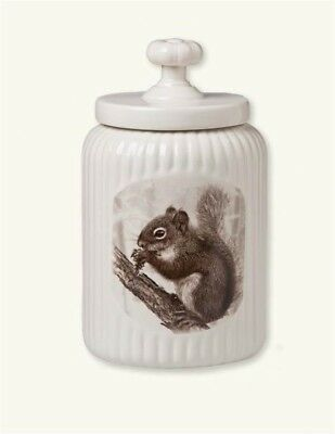 Victorian Trading Co Little Nibbler Squirrel Cookie Jar Free Ship NIB