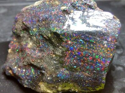 Top Quality Large Black Opal Matrix Flash Fire - Honduras - 280 ct