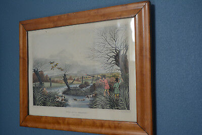 1810 Rare Birdseye Maple Oee Picture Frame With Hunting Sports Print R. Havell