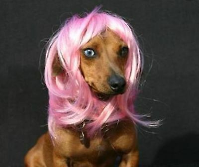 Cute Synthetic Pet Wig Dogs Cats Wig Lovely Dog Cat Supplier Size Small Pink