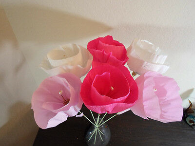Large Mexican Crepe Paper Flowers Set Of 6 2 White 2 Pink 2