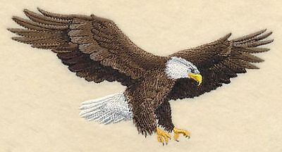 "Bald Eagle, Birds of Prey Embroidered Patch 6.1""x 3.3"""