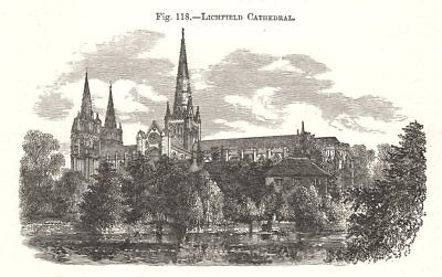 Lichfield Cathedral. Staffordshire 1885 old antique vintage print picture