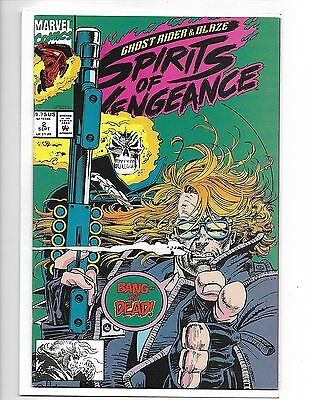 Ghost Rider Blaze Spirits Of Vengeance 2 Midnight Sons