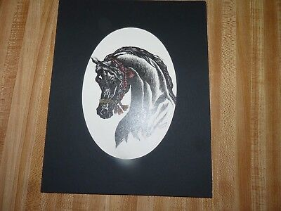 Arabian horse art print by Sandra Snow 8 x 10 black with red halter