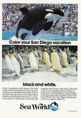 1985 Sea World: Color Your San Diego Vacation Vintage Print Ad