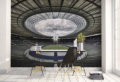 Stadium Arena Opening Ceiling Clouds Photo Wallpaper Wall Mural (1X-1165959)