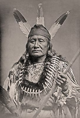 "Dakota Sioux Indian, Native American, Beautiful,  20""x14"" Photo, Bones, Feathers"