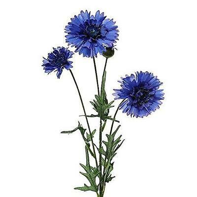 Bunch of Four Cornflower Stems 65 cm Artificial Realislowers Fake Flowers
