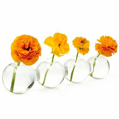 Caterpillar Large Glass Flowers Bud Vase individual stems Row of 4 joined Vases