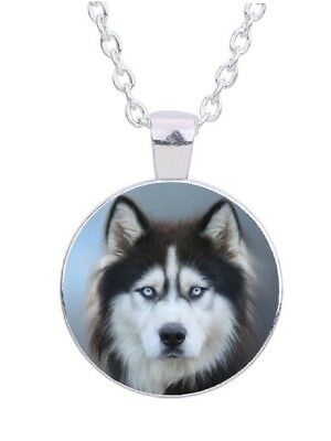 "Siberian Husky Dog 20""  Silver Tone Chain Glass Cabochon Pendant Necklace"